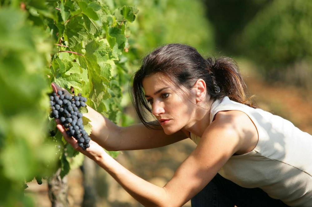 vino_sostantivo_femminile_-_immagini_generiche__2___copy_