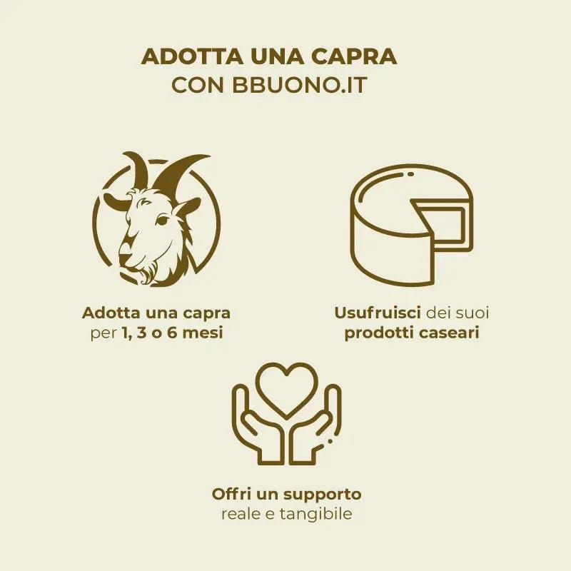 Adozione-capretta-con-bbuono-it-10